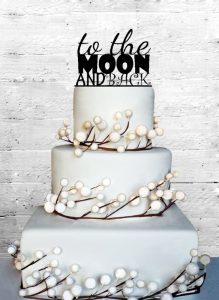 Moon cake 1